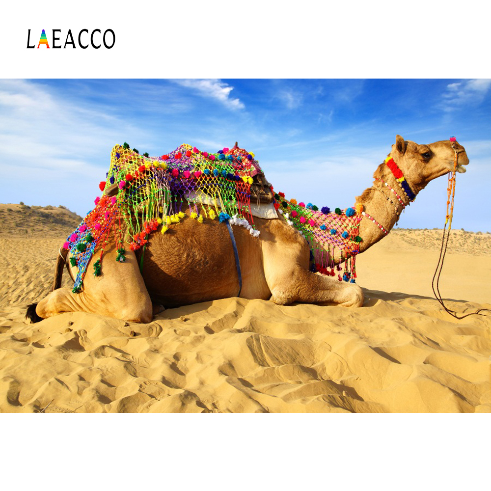 Laeacco Camel Cairn Desert Photo Backgrounds Customized Photography Backdrops For Studio