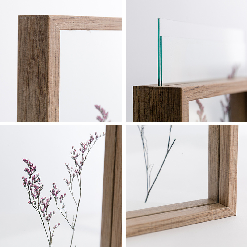 57810 Inch Simple Plant Specimens Double Sided Glass Frame Solid