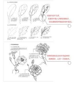 Image 5 - סיני קו ציור ציור ספר/פרחי עט עיפרון לבן שחור סקיצה ציור אמנות ספר