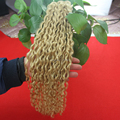 Unprocessed Virgin Peruvian Human Hair Kinky Curly Hair Extension Weave 7A Peruvian Curly Virgin Hair 1pcs #613 Bleach Blonde