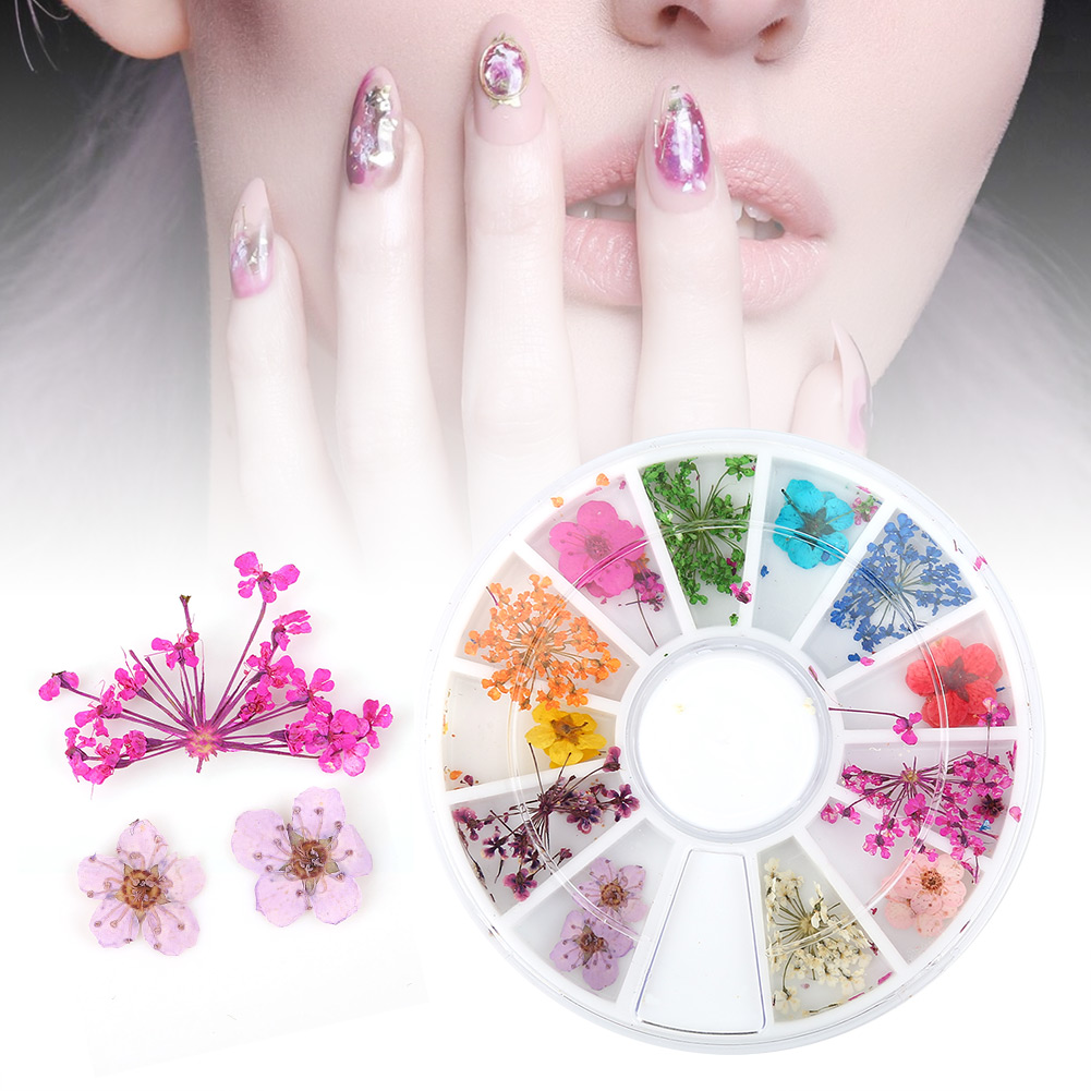 1 Box Natural Dried Dying Flowers Nail Art Decoration Colorful 3d ...