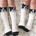 Pre-Order Middle Of March Kids Tinycotton  Kid Girl Boy Bullfight Stocking Pattern Dogs Knee High Socks Baby Girls  Cicishop A*