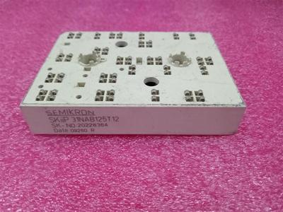 Freeshipping New and original SKIIP31NAB125T12 SKIIP 31NAB125T12 Power module
