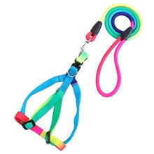 1Pcs Cute Rainbow Colorful Pet Training Weave Nylon Harness Traction Belt Round Dog Leashes Lead Neck/Chest Rope High Quality