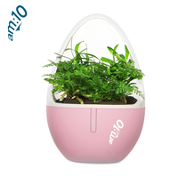 Portable Air Purifier For Home Air Cleaner Sterilizer Flowerpot Anion Ionizer Generator Aromatherapy Sterilization Disinfection