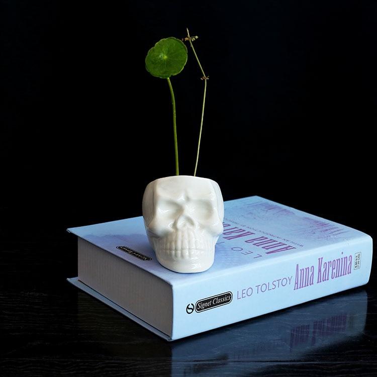 Հասարակ ստեղծագործական եվրոպական սպիտակ գանգերի կերամիկական ամաններ, միկրո լանդշաֆտային պարտեզներ կարող են խմել succulents, hydroponics, ծաղիկների simulati