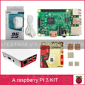 A Raspberry Pi 3 Model B starter kit-pi 3 board / pi 3 case /American standard power supply/16 G memory card /heat sink