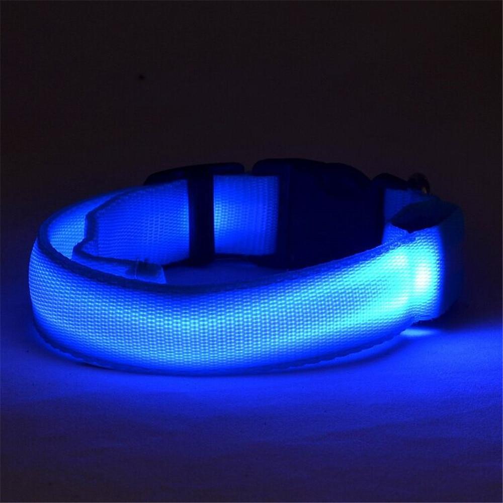 LED Honden Halsband Honden Halsband Batterij Aangedreven of USB - Producten voor huisdieren