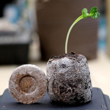 10/20/50 шт, 25 мм, два счета кокосовый торф Coco овощей гранулы семян начиная Вилки стартер роста семян поддон блоки грунта под рассаду питательный грунт