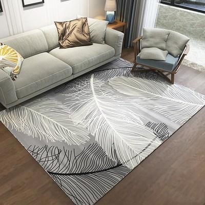 Salon table basse tapis peluche chambre complet chevet couverture rectangulaire simple moderne tapis haut de gamme épais corail polaire tapis