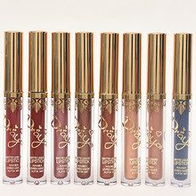Pigment Brown Gold Metal Lip Gloss