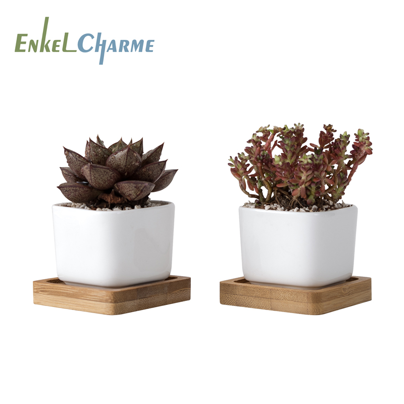 2Pieces Geometic White Ceramic Square Bonsai Planter Little Succulent Flower Pots Modern Small  Cactus Flowerpot Bamboo Tray