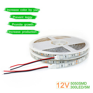 Image 5 - LED Grow light Full Spectrum 5M LED Strip light 5050 LED Flower Plant Phyto Growth lamps For Greenhouse Hydroponic Plant Growing