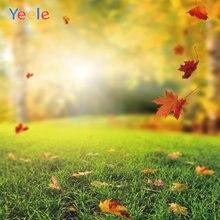 Фон для фотосъемки с изображением осенних листьев и земли