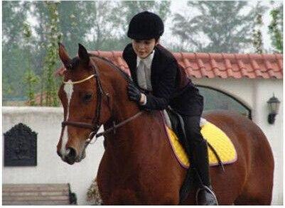 Prix pour Réglable Équestre Équitation Casque H23132