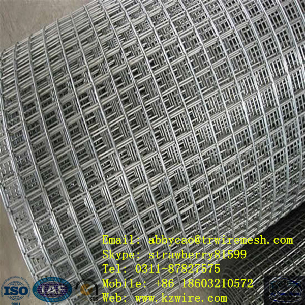 Galvanized Welded Wire Mesh | 1 Hot Dipped Galvanized Welded Wire Mesh With Low Price On