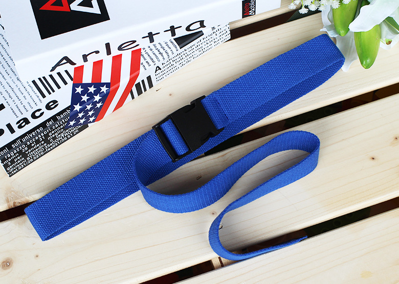Женский ремень Харадзюку, красный, с буквенным принтом, модный, унисекс, двойное d-образное кольцо, Холщовый ремень, женские длинные ремни для джинсов - Цвет: Style 2 Blue