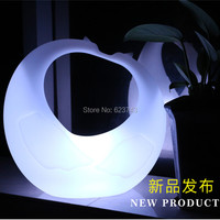 Outdoor waterproof rechargeable luminous Bird Swan LED Night Light remote control led mood light for home garden lawn decoration