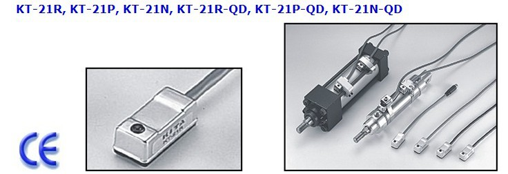 KT-21R capteur REED commutateur (LONG fil) AC DC 5-240 V
