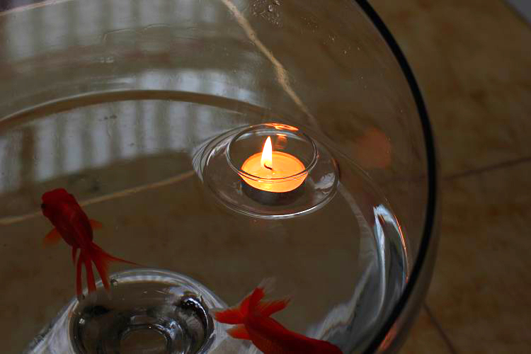 Beautiful Gl Bowl Candle Holder Floating Tealight Wishing Pool Light Gift Home Xmas Wedding Centerpiece X 12 In Holders From Garden