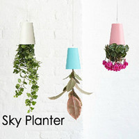 Seeding flower pot flower pot home decoration fashion flower pot Sky planter Stylish home decor office decoration gifts