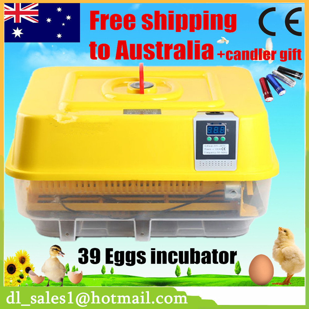 1 Piece Home Use 39 Eggs Automatic Incubator Digital Chicken Duck Eggs Incubators Machine mini home use eggs incubators chicken digital eggs turner hatchers hatching tray machine equipment tool