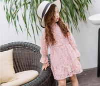 2017 Girl's summer sweet lace princess dress , dresses for girls , girls wedding dress , 5pcs/lot SSM01