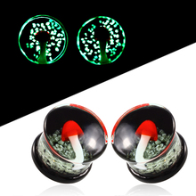 1Pair Pyrex Glass Ear Plugs and Tunnels Earring Gauges Expander Stretcher Cartilage Tragus Plugs Tunnel Piercing Body Jewelry