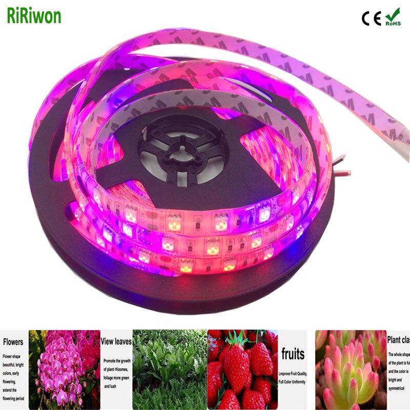 led grow завод