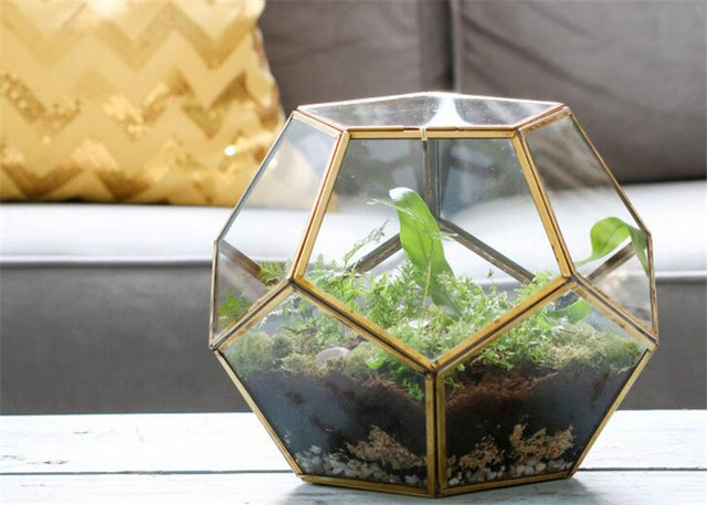 Table Dodecahedron Glass Terrariums Soldered Glass Planter Bottle