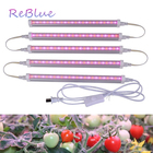 ReBlue Lamp For Plan...