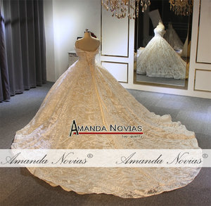 Image 3 - Off the shoulder straps ball gown princess wedding dress champagne color brand new