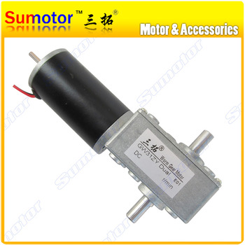 GW31ZY DC 12V 24V Worm Gear motor double shaft High torque low speed for Intelligent robot Smart car vehical Boat model