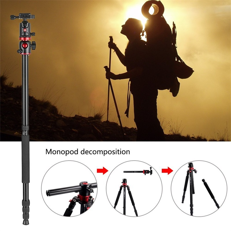 ZOMEI M8 Camera Tripod Portable Monopod Overhead -7