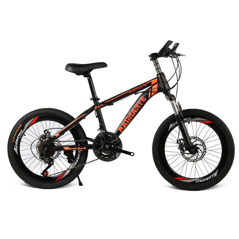 20 Inch Mountain Bike 21 Speed Bicycle Front And Rear Disc Brakes Bicycle Straight Beam Riding Mountain Bike