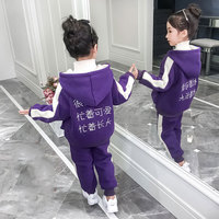 New Fashion Newborn Baby Girl Clothes Suits Autumn Winter Hooded Jackets Coat Pants 2Pcs Outfit Cotton Baby Girls Tracksuit Set