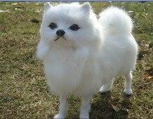 about 23x20cm simulation dog white Pomeranian toy model polyethylene furs resin handicraft birthday gift h1002