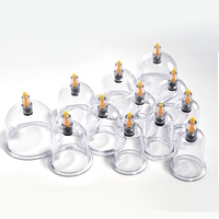 Vacuum Cupping Device 12 Cans Chinese Medicine Ventosa Terapia Household Magnetic Therapy Negative Pressure Physiotherapy