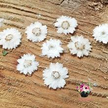 120ピース押し花白strawflower花植物ハーバリウム用ジュエリーペンダントリングイヤリング花作るアクセサリー