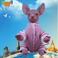 48 см Reborn куклы Сфинкс безволосая кошка Реалистичная виниловая реальная жизнь декоративные игрушки куклы для девочек Игрушки для девочек