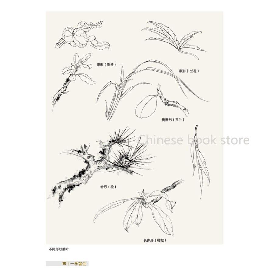 Facile Maitre Chinois Traditionnel Brosse Peinture Techniques Livre