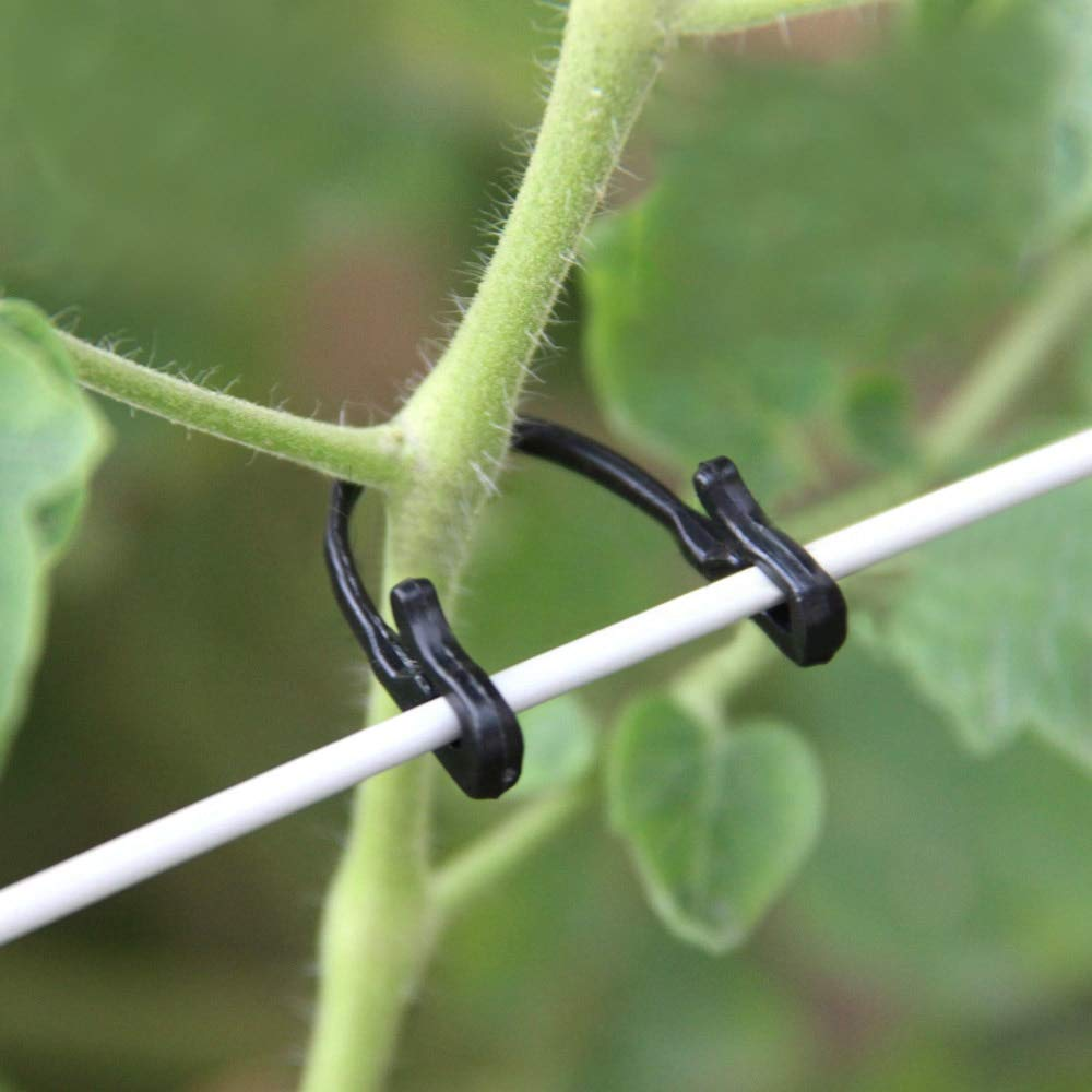 100pcs/lot Self-Locking Plant Vines Fastener Tied Buckle Hook Vegetable Grafting Clips Agricultural Greenhouse Garden Supplies