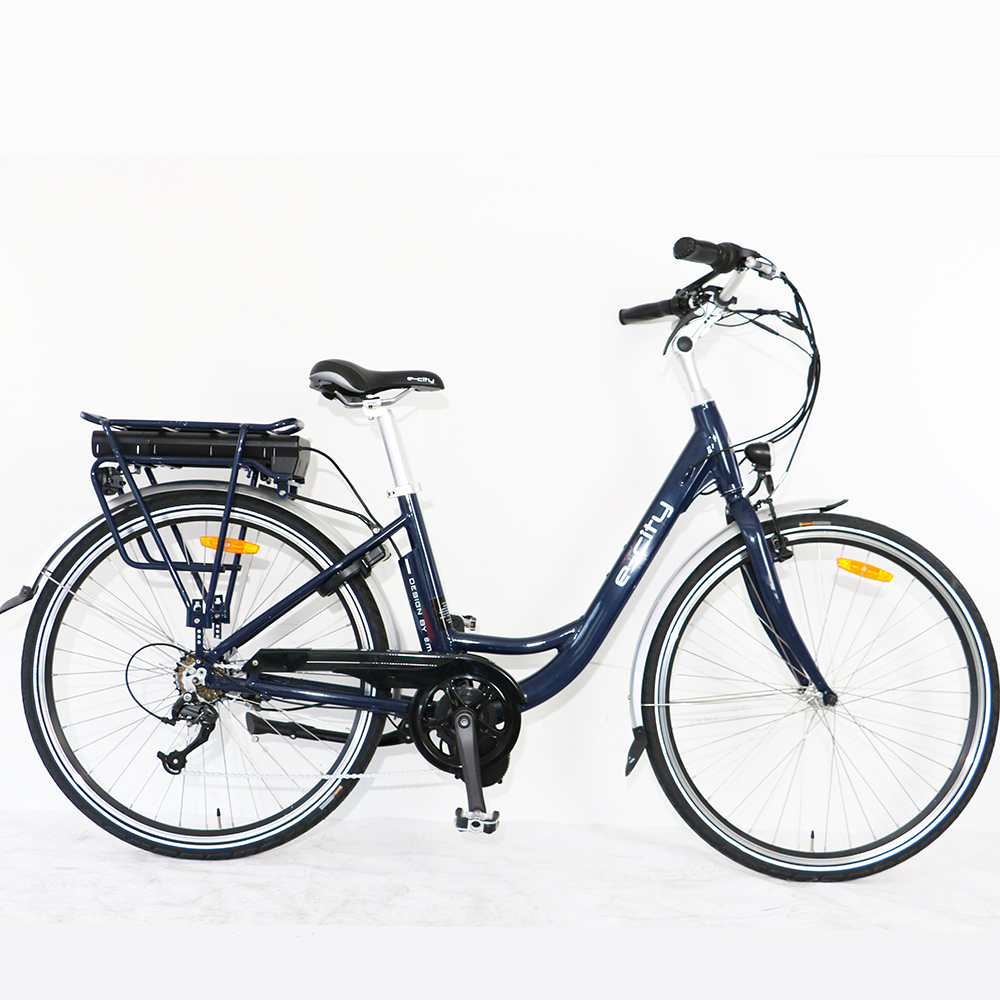 Bafang motor 36V250W BBS Mid-Drive Motor CITY Electric Bike with 36V 10.4AH Lithium Ion Battery