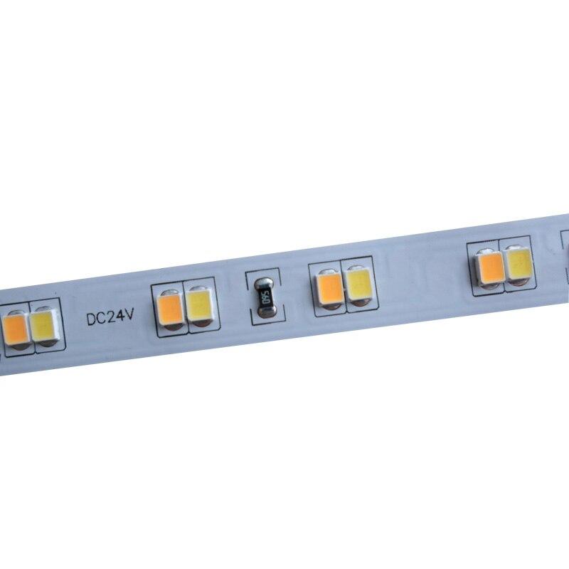 5mX 2835SMD LED strip light DC24V input 112LED m CW WW color temperature adjustable free shipping