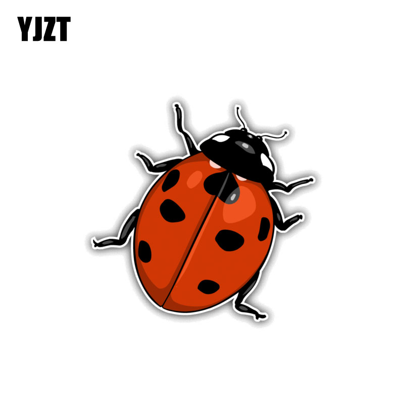 YJZT 12CM*10.6CM Ladybug Animal Cartoon Car Sticker Funny PVC Decal 12-1086
