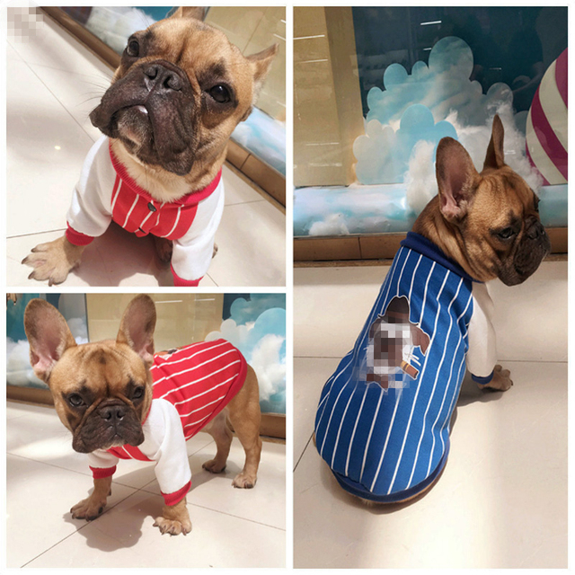 Warm Pet Clothing For Dog Clothes Thickening Dogs Coat Jacket Pet