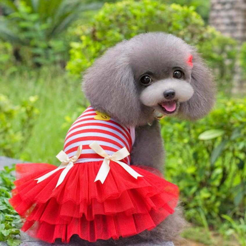 Happy Wysokiej Jakości 2016 Słodki Piękny Puppy Dog Princess Dress - Produkty dla zwierząt domowych - Zdjęcie 5