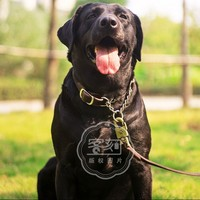 In vera Pelle fibbia in ottone + P catena Miglior Collare di Cane Del Cucciolo collare Pet Supplies Dog Accessori 35-53 CM Per Medium Large cane