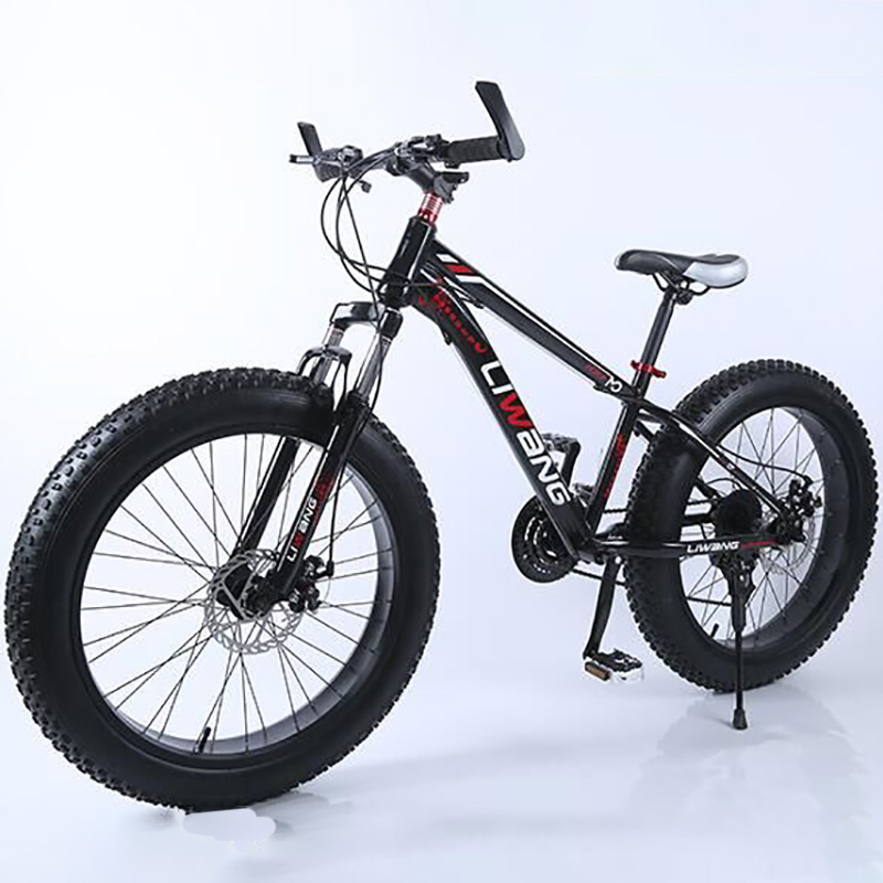 21-speed 24-inch High-carbon Steel Double Disc Bike Producers Mountain Bike