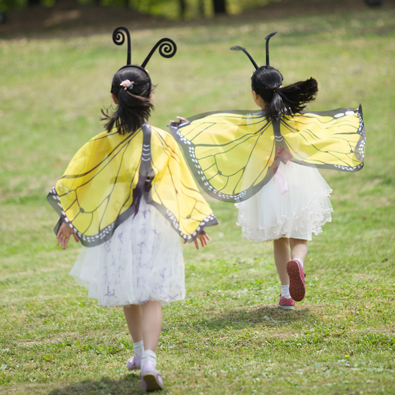 Girls Princess Fairy Butterfly Wings Costume Fairy Halloween Costumes for Kids